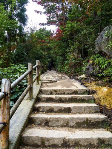 Wanderweg auf dem Berg Misen, Hiroshima, Japan