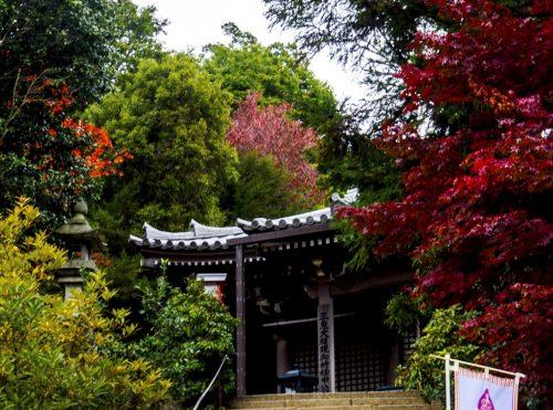 Sanki Do, ein weiterer Pavillon auf dem Berg Misen, Miyajima, Hiroshima, Japan.