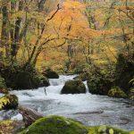 Die Natur am Fluss Oirase und Towada-See in der Aomori Präfektur