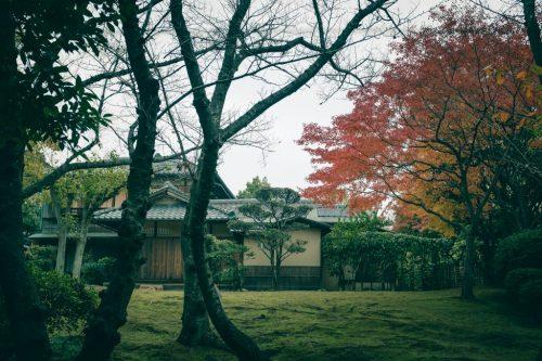 Sen no Rikyu, der Meister der Teezeremonie, Sakai, Osaka, Region Kinki, Japan.