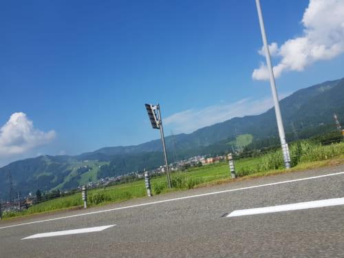Reisfelder rund um Nagaoka, Präfektur Niigata, Japan.