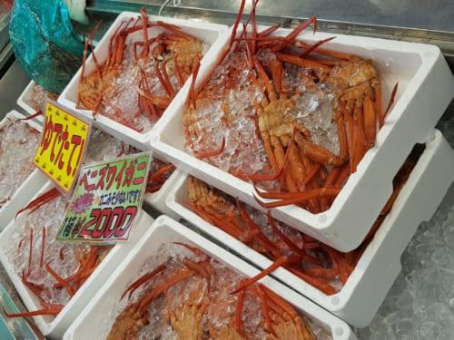 Fischmarkt von Teradomari, Präfektur Niigata, Japan.