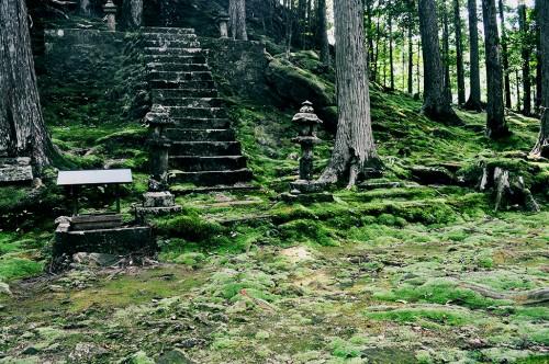 Sendero cubierto de musgo en las montañas de Kumano.
