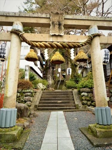 Torii del templo Hie, en Shuzenji (Shizuoka).