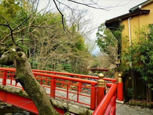 Puente y bosque en Shuzenji, Shizuoka.