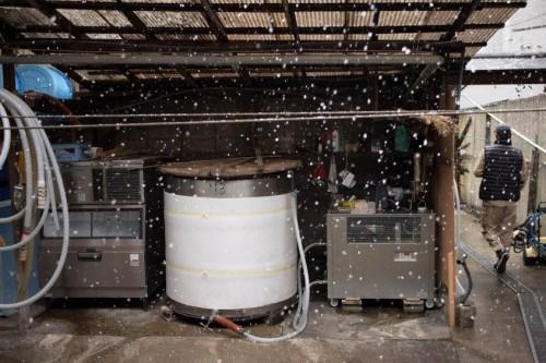 Destilería de sake Masuichi Ichimura