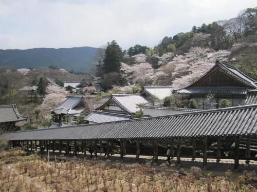Templo Hasedera de Nara