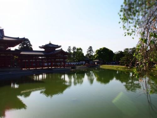 Templo Byodo-in de Uji, a las afueras de Kioto.