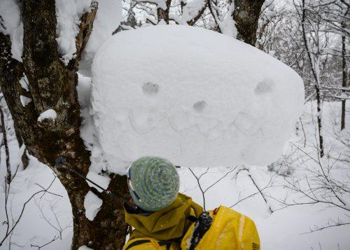 Nieve polvo japonesa en el lago Tazawa, Akita, Tohoku, Japón.
