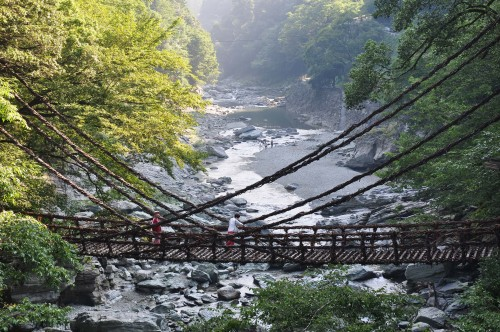 Kazurabashi, le pont de liane de shikoku au Japon
