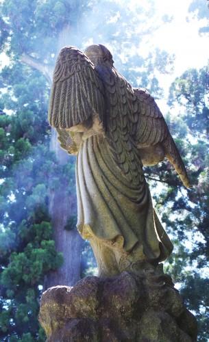 Les statues de Tengû au temple Yakuo-in du mont Takao