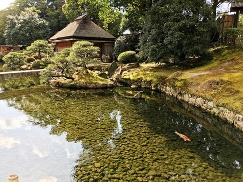 Le jardin japonais Koraku-en à Okayama (Préfecture d'Okayama), un des plus beaux jardins japonais du Japon