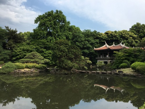 Le jardin Shinjuku Gyoen à Tokyo, Japon.