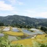Le village de Yamakoshi: culture vivante et répit rural au cœur de la préfecture de Niigata