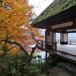 Voyage dans le temps et les époques à Ozu