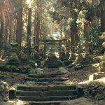 Nature et spécialités locales au sud de la caldeira du mont Aso
