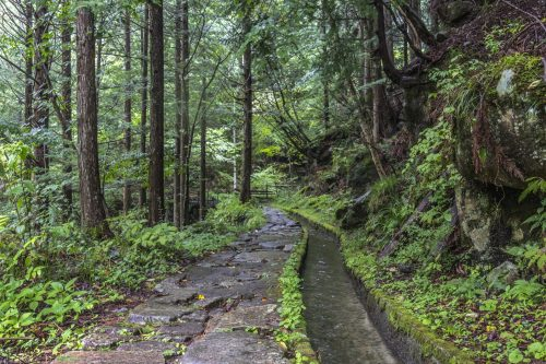 Hiking trail in Yumori Park in Nakatsugawa, Gifu Prefecture, Japan