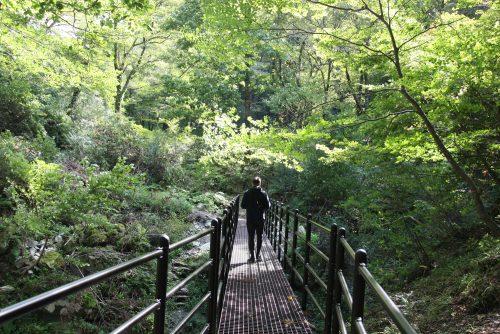 Sentiers de randonnée sur le Mt Daisen dans la préfecture de Tottori, Japon