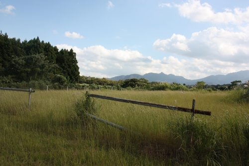 Champ au pied du Mt Daisen dans la préfecture de Tottori, Japon