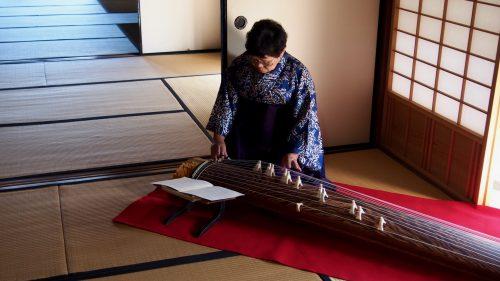 Koto, instrument de musique traditionnel, dans une ancienne maison de samouraï à Izumi, Kagoshima, Kyushu, Japon