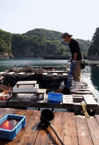 M. Abe, patron du restaurant Fukashima Shokudô, au dessus de son enclos à poisson