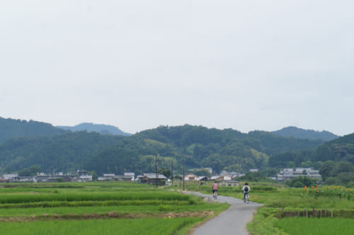 Deux personnes à vélo au milieu des rizières dans le village d'Asuka, préfecture de Nara