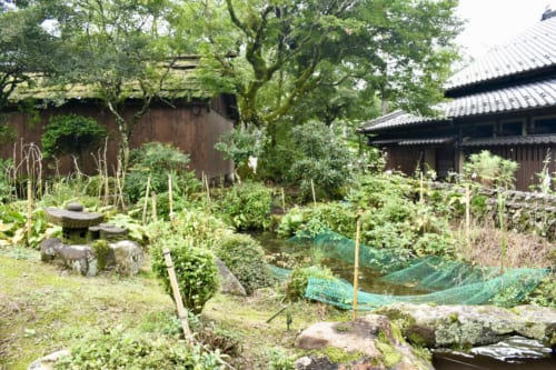 Le jardin du Minshuku Yamanosato, et son étang