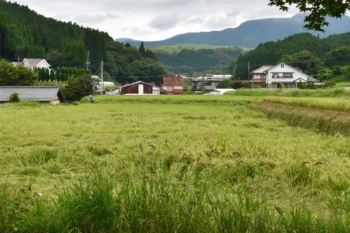 La vue sur la campagne et la montagne depuis le Minshuku Yamanosato, à Ubuyama