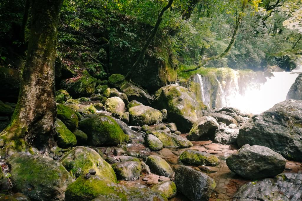 Une des cascades que l'on croise en se promenant dans la forêt de kikuchi