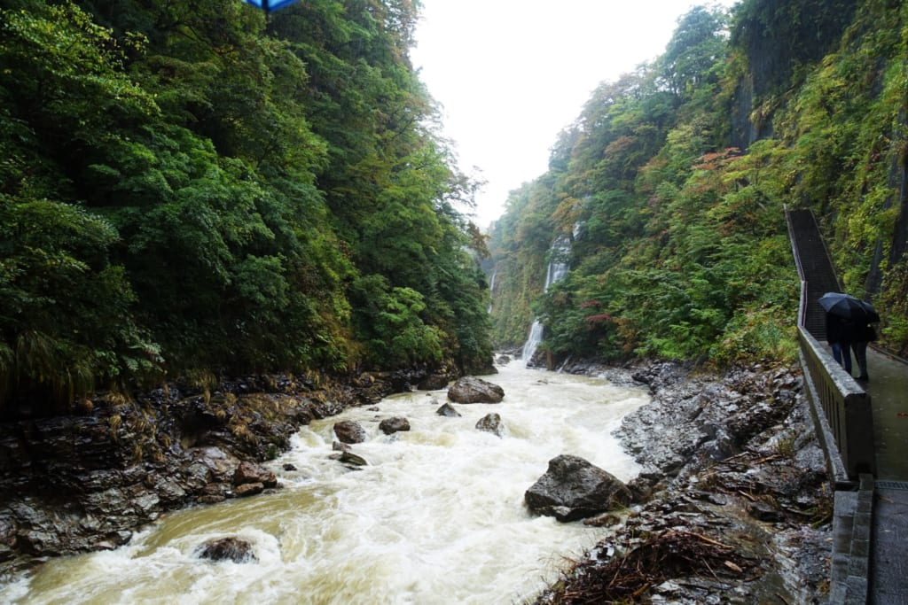 L'impressionnant cours d'eau qui creuse les gorges d' Oyasukyo
