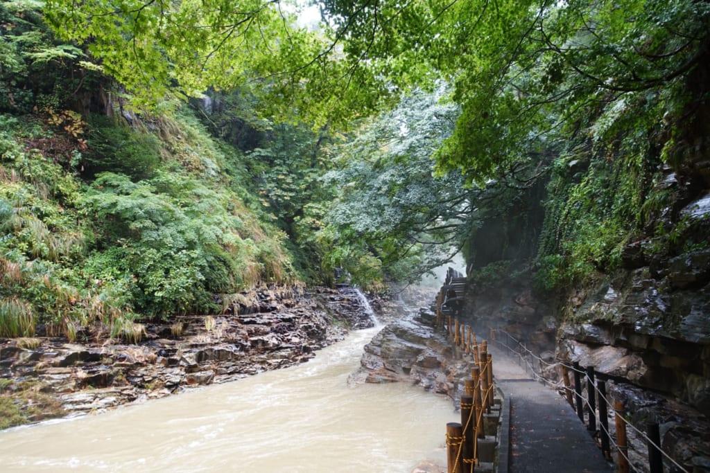 Le paisible sentier de randonnée qui longe les gorges d' Oyasukyo