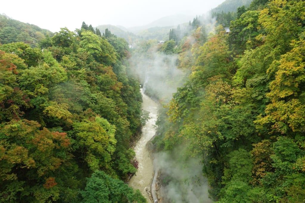 Les gorges d' oyasukyo creusées par le fleuve