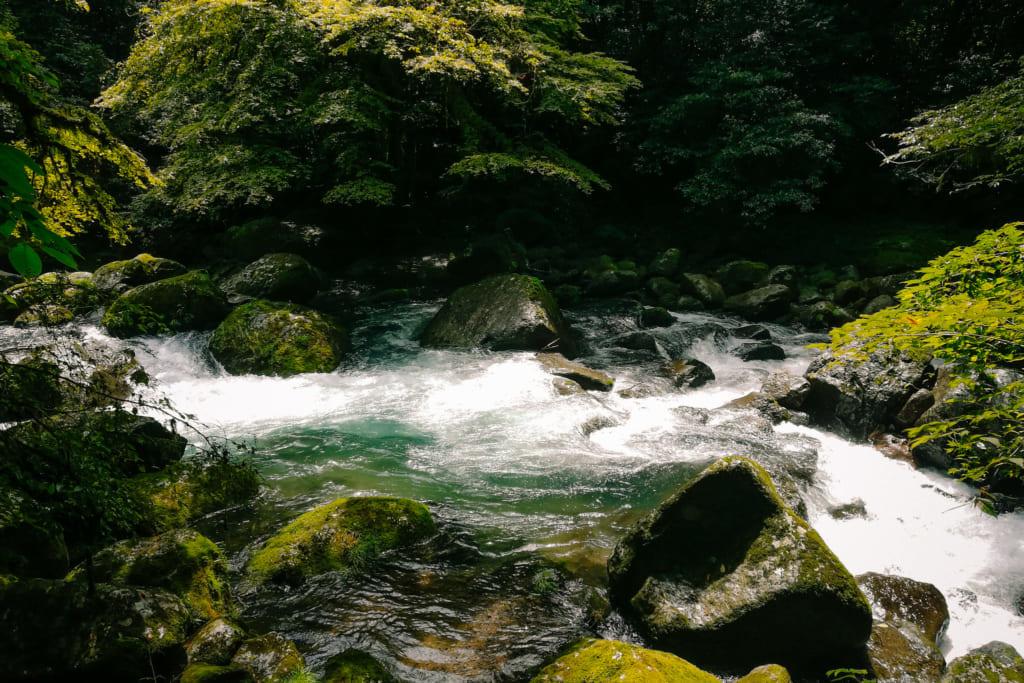 Les eaux pures de la rivière des gorges de kikuchi
