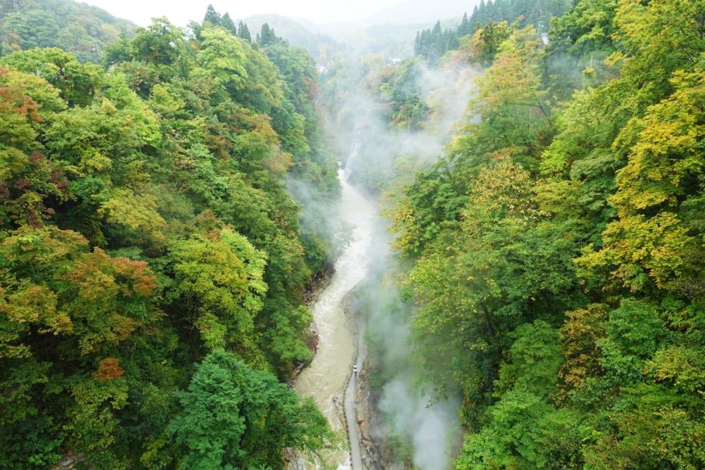 Les gorges d' Oyasukyo et ses nuages de vapeur qui se perdent dans la nature luxuriante
