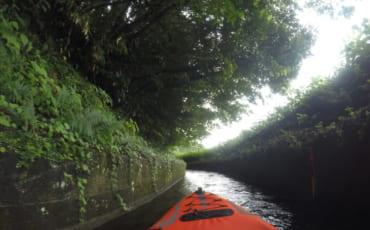Photo prise depuis un canoe kayak dans les canaux d'irrigation de kikuchi