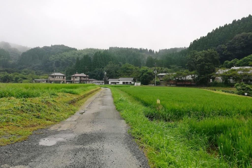 Route menant à Hirayama onsen