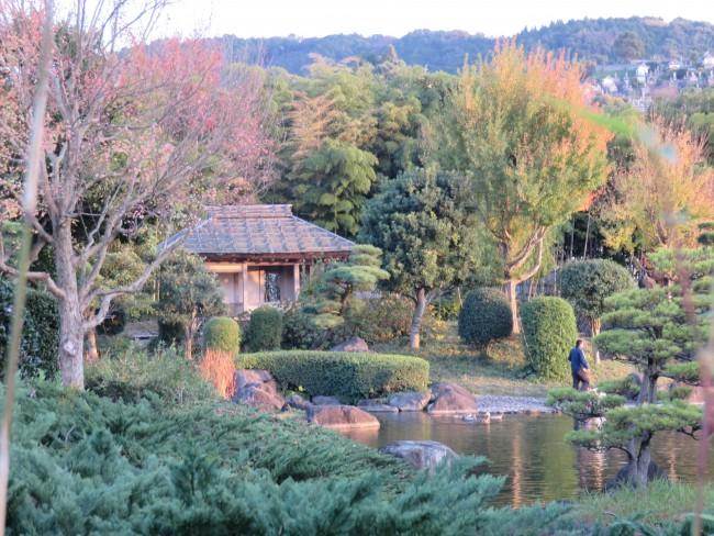 garden in the Minamata seaside, Japan