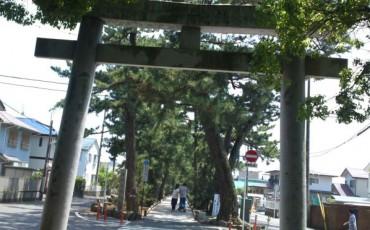 beach,fisherman,forest,Hagoromo,legend,matsu,noh,park,pine,play,Mount Fuji