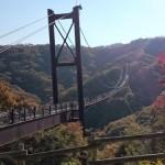 Walking in Kisaichi Hoshida-Enchi Park, Osaka's off-the-beaten-path secret