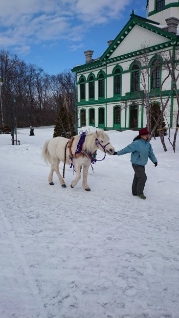 A horse and its owner at the historic Hokkaido Open Air Museum