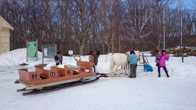 a horse and carriage that you can take a ride along the main street of the Hokkaido museum