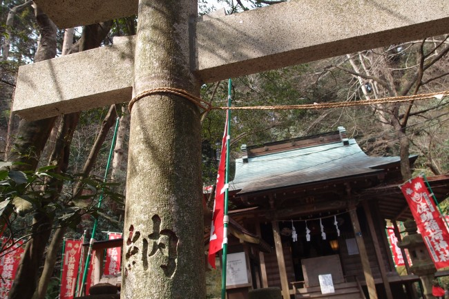 Mossy green spots continue nature through olden shrines, Kamakura, Daibutsu hiking trail