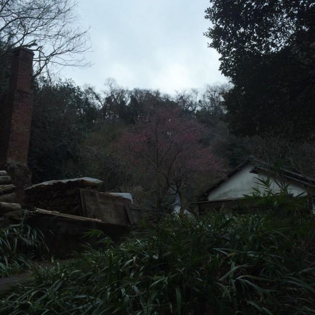 Takaranoniwa are fine figurines set against nature green, Daibutsu hiking trail, Kamakura