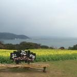 Nokonoshima, a beautiful floating island!!