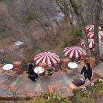 A True retreat in the forest – Cafe Itsuki in Kamakura!
