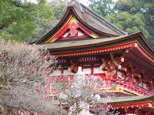 Dazaifu Tenmangu shrine, Fukuoka