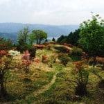 Hike from Shugakuin to Mount Hiei and Enryaku-ji Temple