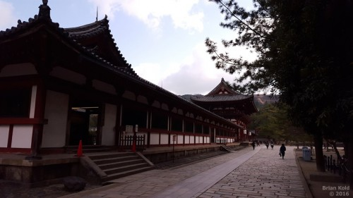 Todaiji Temple in Nara is the physical embodiment of Japanese Buddhism history