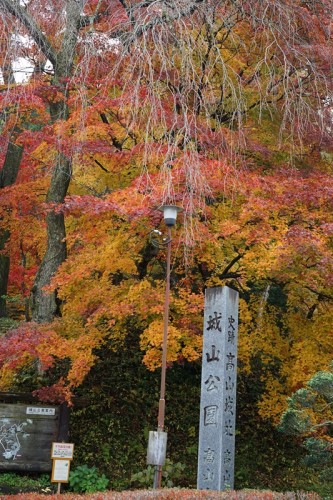 Trees in Shiroyama Park along a walking course in Takayama in autumn.