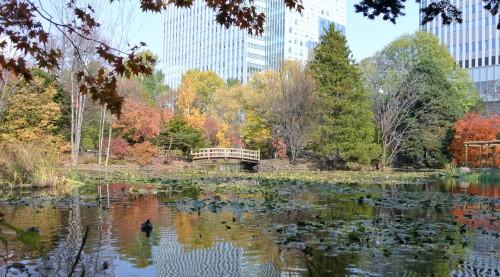 Sapporo Hokkaido Shrine Travel Guide Attractions Ramen Greenery Zoo Beer Museum